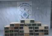 قاچاقچیان ایرانی با محمولهای از 120 هوبره در کویت دستگیر شدند