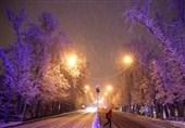 پایداری شبکههای توزیع برق مازندران پس از 24 ساعت از بارش برف
