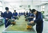 آموزشهای رایگان فنی و حرفهای به جوانان جویای کار شهرستان چرام ارائه میشود