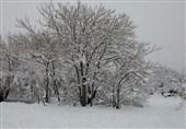 یاسوج| مه، برف و باران شدید در محل وقوع حادثه هواپیمای تهران-یاسوج
