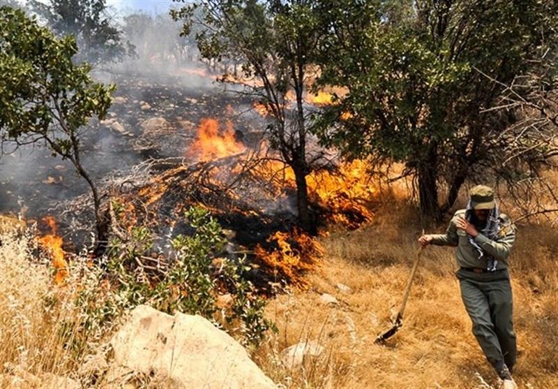 خوزستان رتبه نخست آتشسوزی مراتع و جنگلها در سال 96
