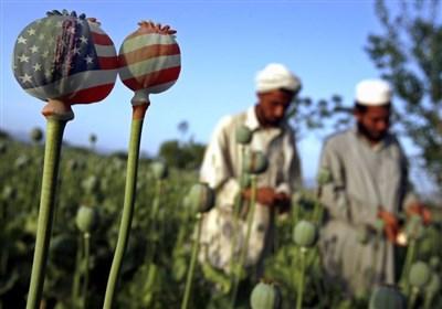 فعالیت سیا و موساد در تجارت مواد مخدر؛ افغانستان باید ناآرام بماند