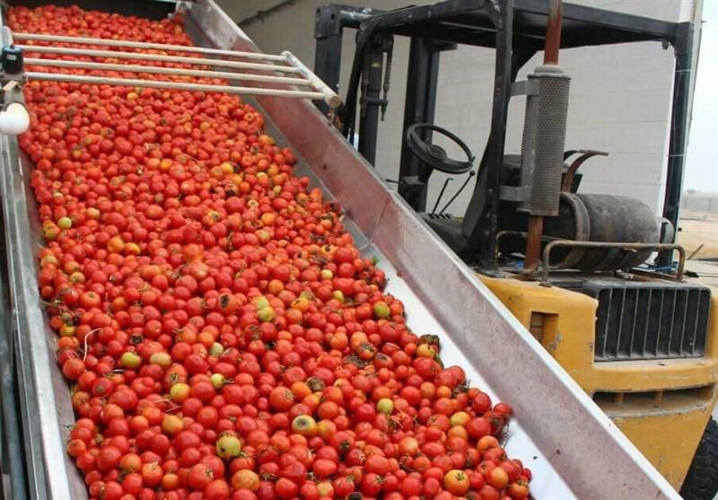 مجوز 45 کارخانه فرآوری محصولات کشاورزی در جنوب کرمان صادر شد