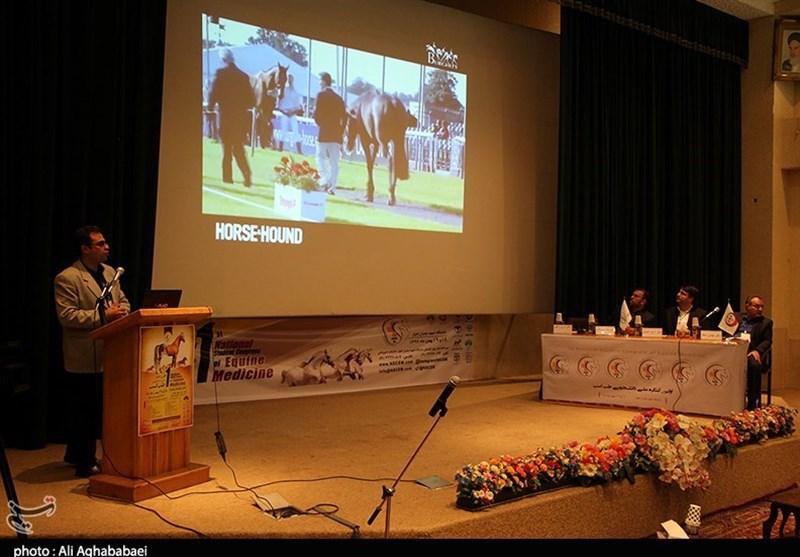 جشنواره ملی طب اسب در اهواز