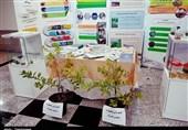 بجنورد  استفاده از روشهای سنتی در کشاورزی از رونق تولید محصولات دانش بنیان کاسته است
