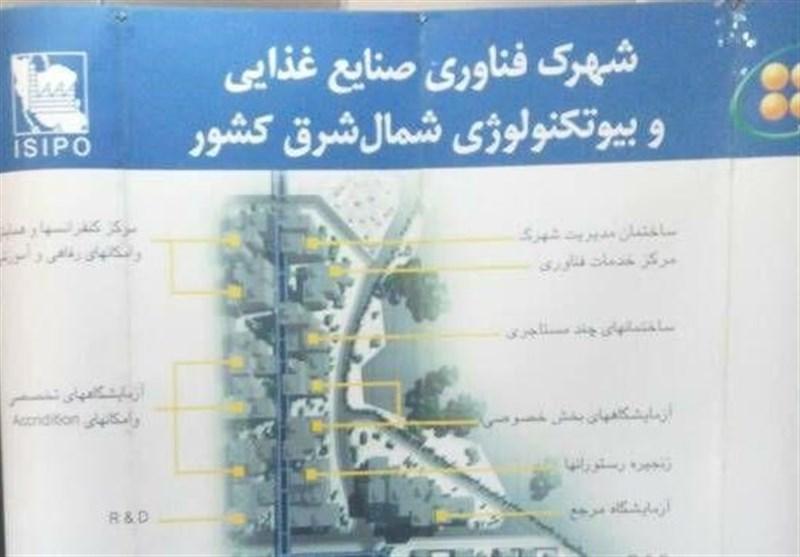 بوشهر| نیازهای فناورانه خوشه صنعتی خرما برطرف میشود