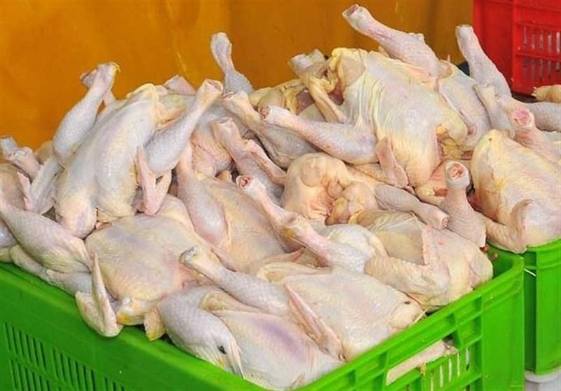 تولید دو میلیون و ۳۰۰ هزار تن گوشت مرغ تا پایان سال