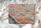 مرغداران: دولت علیه تولیدکنندگان دامپینگ میکند + سند