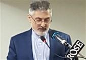 نماینده ایران در هند: گفتوگوهای ملی در کشورهای بحرانی عامل ایجاد امنیت پایدار منطقه است
