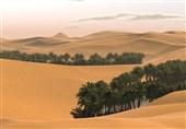 طرحهای بیابانزدایی و کاهش فرسایشهای بادی اراضی استان بوشهر اجراء میشود