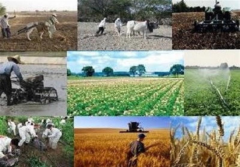 160 میلیارد تومان از تسهیلات اشتغال روستایی در همدان پرداخت شد