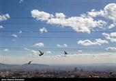 خروج توده گردوغبار از خوزستان؛ رنگ آسمان اهواز در روز ملی هوای پاک آبی شد