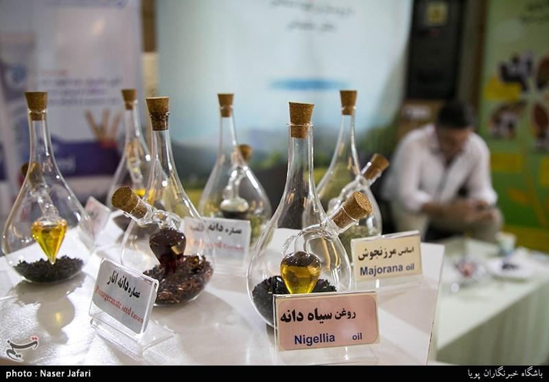 استارتاپ گیاهان دارویی و بلوط در لرستان برگزار میشود