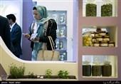 جشنواره و نمایشگاه ملی گیاهان دارویی و طب سنتی افتتاح شد