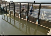 لرستان| فاز اول پرورش ماهیان خاویاری پلدختر با حضور وزیر جهاد کشاورزی افتتاح میشود