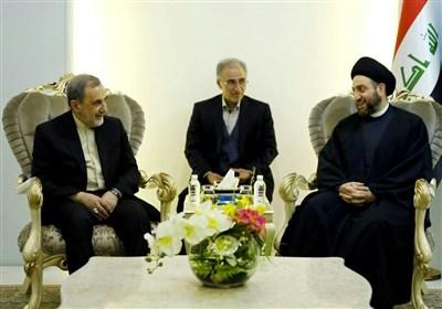 حکیم در دیدار ولایتی: ایران در مبارزه با تروریسم به معنای واقعی کلمه در کنار عراق بود