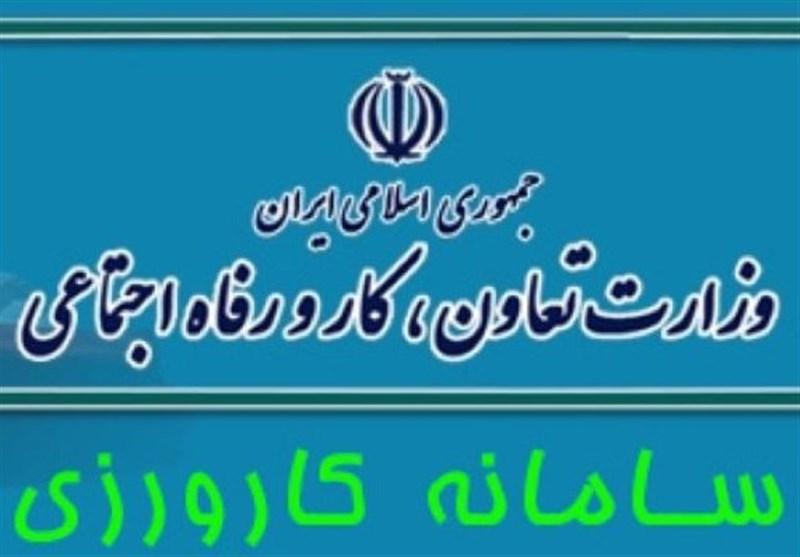 زنجان|ناامیدی فارغالتحصیلان برخی از رشتههای دانشگاهی از طرح کارورزی