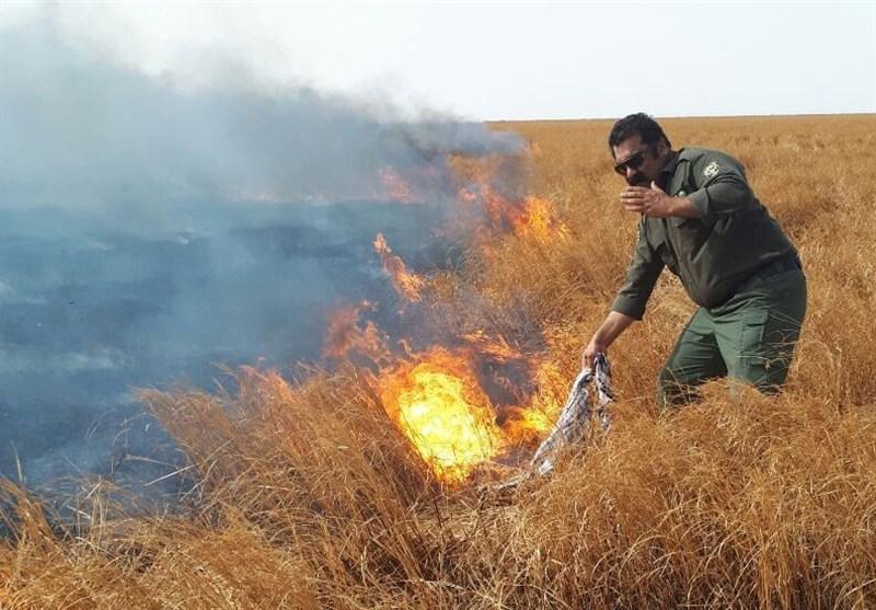 زاهدان  عامل انسانی موجب آتش گرفتن بستر تالاب هامون شد