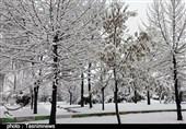 ارومیه| مدارس بعد از ظهر 3 شهر آذربایجان غربی تعطیل شد