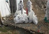 انتقاد رئیس سازمان دامپزشکی از پنهانکاری درباره شیوع آنفلوانزای حاد پرندگان