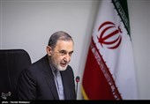80 Countries Involved in Syria War: Iran's Velayati