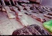 ساری| 541 کیلوگرم انواع موادمخدر در مازندران کشف شد