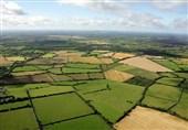 کاشان| قطعهبندی اراضی کشاورزی غیرقانونی است