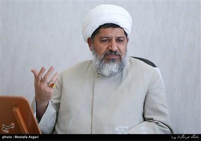 حجت الاسلام شیرازی: علمای کشورهای اسلامی در برابر جنایات آمریکا و رژیم صهیونیستی بایستند