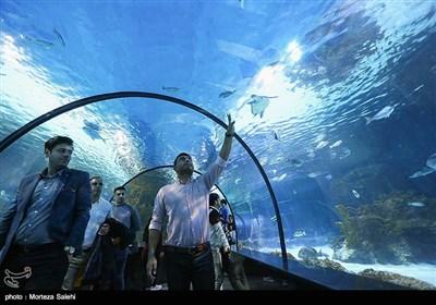 اولین تونل آکواریوم ایران در اصفهان