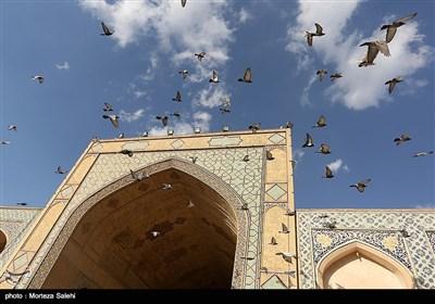 سرزمین مادری / مسجد جامع اصفهان