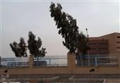 وزش باد شدید و خیزش گرد و خاک چهارمحال و بختیاری را فرا میگیرد