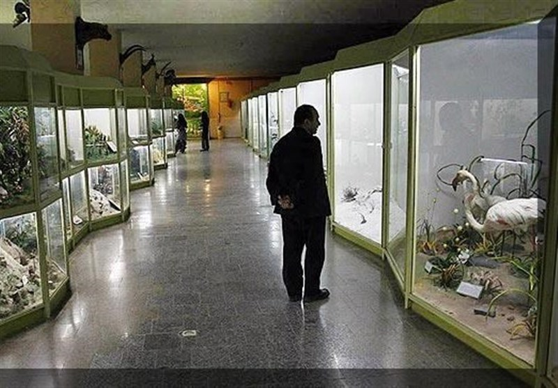 Iran's Hamedan Museum of Natural History