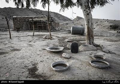 خشکسالی، عامل مهاجرت بسیاری از مردمان ساکن منطقه ارغون است.