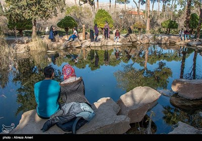 Iran's Beauties in Photos: Eram Garden in Shiraz