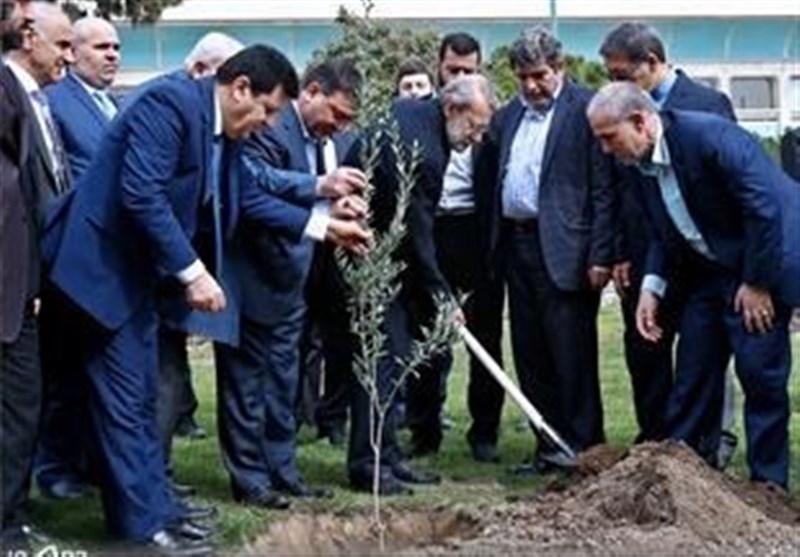 غرس یک اصله نهال زیتون توسط لاریجانی در روز درختکاری
