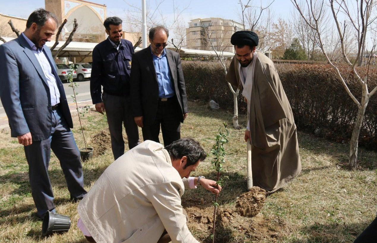 همدان  مراسم روز درختکاری در دانشگاه آزاد همدان برگزار شد