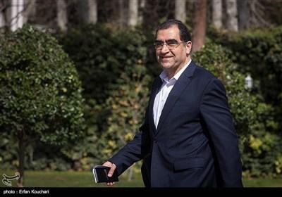 سیدحسن قاضیزاده هاشمی وزیر بهداشت در حاشیه جلسه هیئت دولت