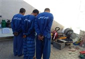 بوشهر|سارقان منازل در دشتستان دستگیر شدند