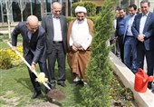 کاشت نهال توسط مدیرعامل بانک کشاورزی در روز درختکاری