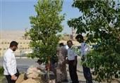 بوشهر| طرح درختکاری خانه تا کارخانه در منطقه صنعتی عسلویه اجرا میشود