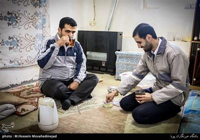 مسعود سبزآبادی به همراه دوستش امیر خرمایی با تقسیم کار به پرورش بلدرچین مشغول هستند