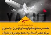 فتوتیتر|مقصر سقوط هواپیمای تهران-یاسوج اعلام شد