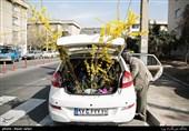 Iranians Greet New Year at Flower Markets