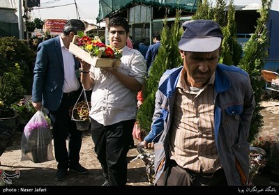 Iranians Greet New Year at Flower Markets