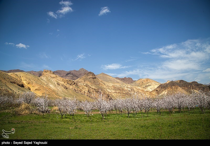 Iran's Beauties in Photos: Spring in Ardabil