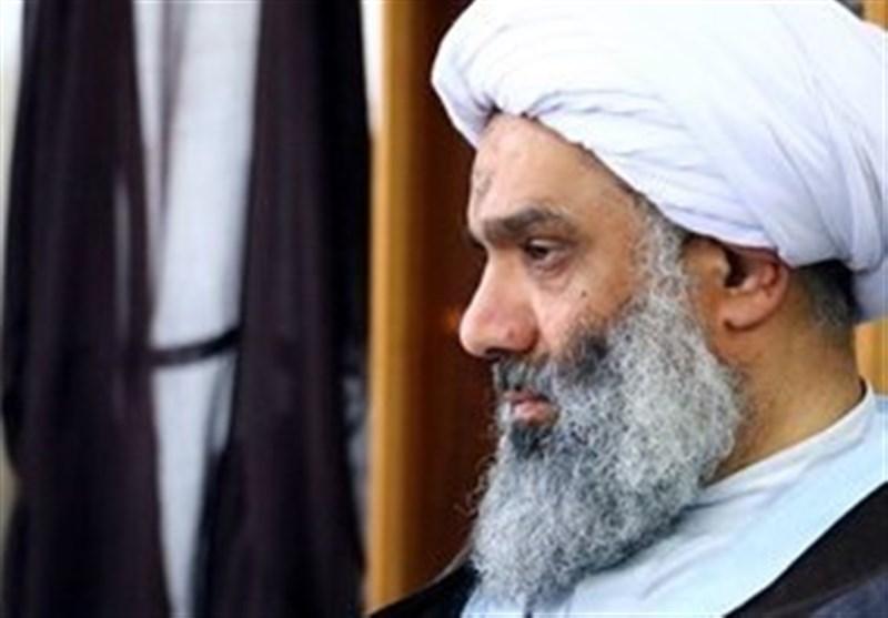 نماینده مردم خوزستان در مجلس خبرگان: شهدای امنیت سند افتخار کشور است