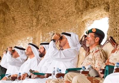کارشناس غرب آسیا: ابوظبی در پروسه سیاسی و امنیتی جنوب یمن ناکام ماند