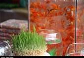 بجنورد| بازار ماهی و سفره هفت سین به روایت تصویر