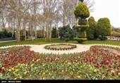 25 هکتار از عرصه کاخ مروارید برای ایجاد باغ گلها اختصاص یافت