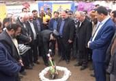 گرگان| طرح گازرسانی به 31 روستای استان گلستان در حال اجراست